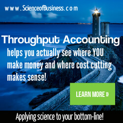 Throughput Accounting Consulting